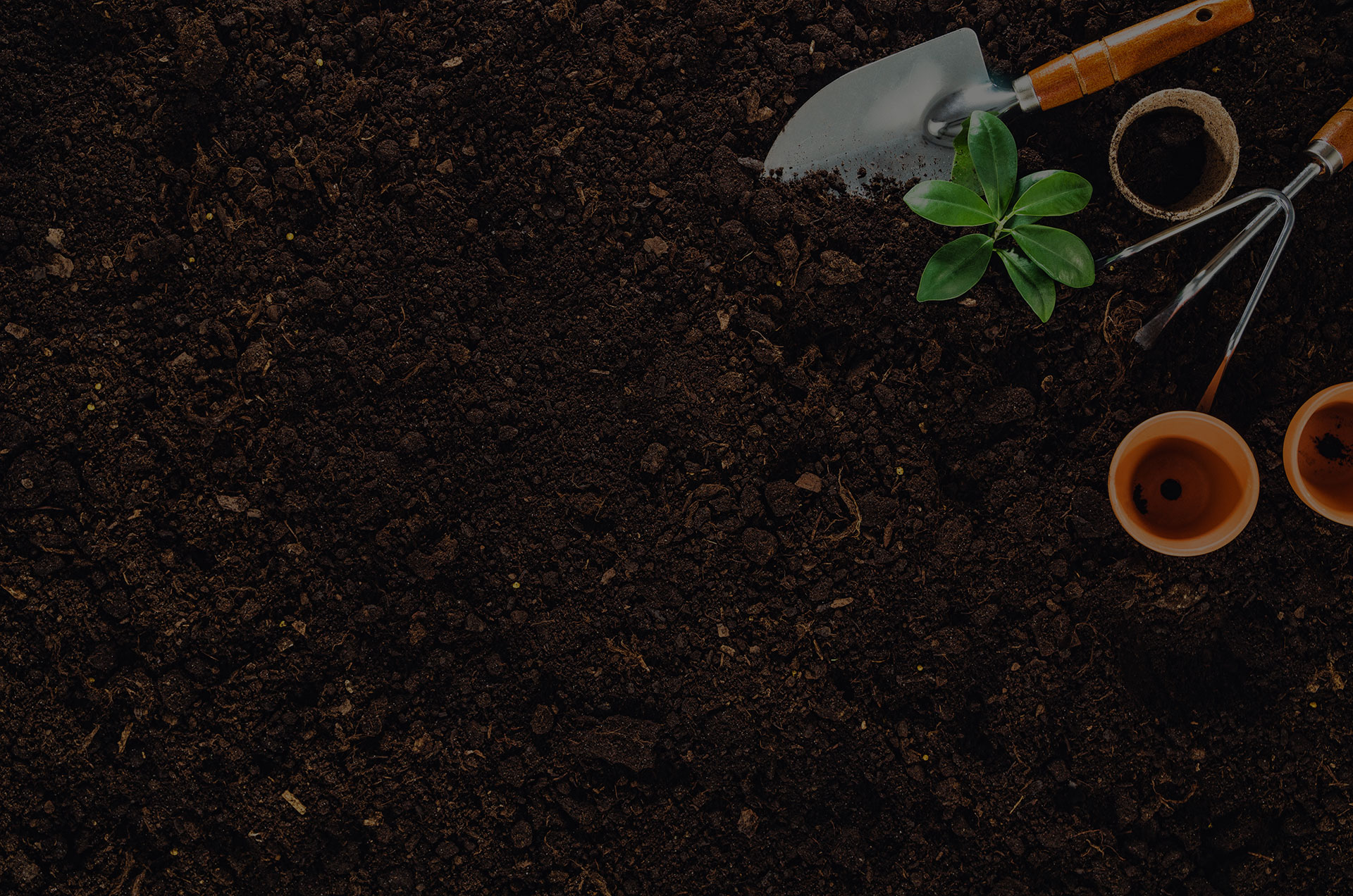 Gardening tools on fertile soil texture background seen from above, top view